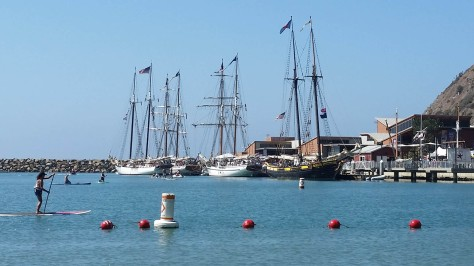 Ryan-Divel-for-Dana-Point-City-Council-Tall-Ships-340
